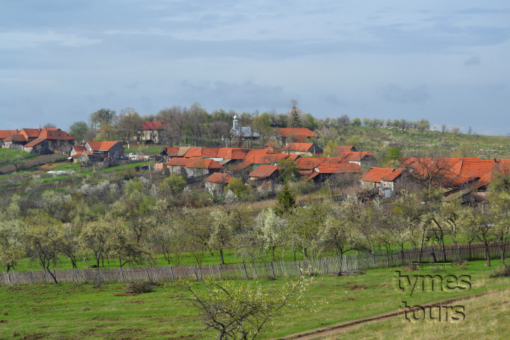 Dubeşti, a small village in the Banat hills